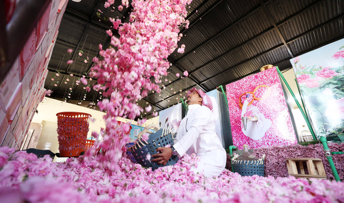 A worker at the Bin Salman farm tosses freshly picked Damascena (Damask) roses in the air, used to produce rose water and oil, in the western Saudi city of Taif, on April 11, 2021. (AFP)