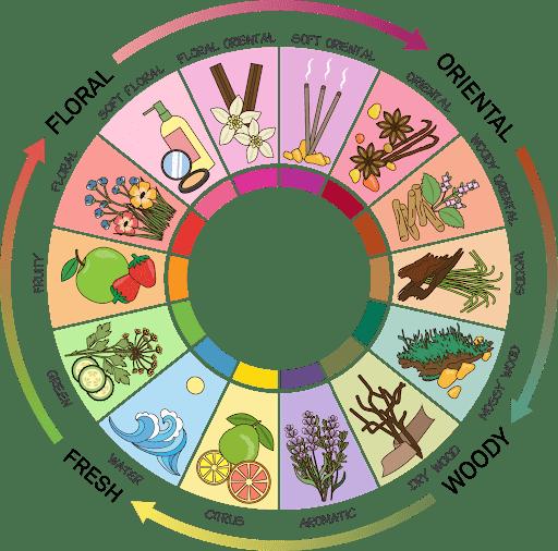 Michael Edwards Fragrance Wheel.